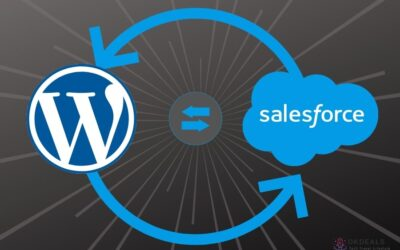 How to integrate Salesforce into WordPress